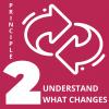 Principles Illustrations (2)